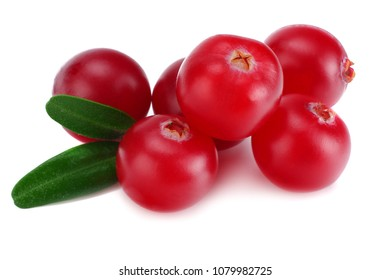 Cranberry with leaves isolated on white. With clipping path. macro