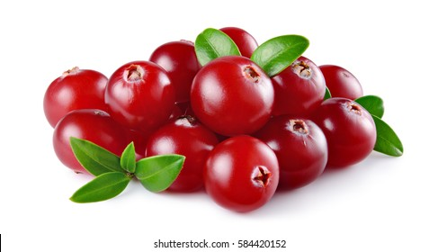 Cranberry with leaves isolated on white background. Full depth of field.