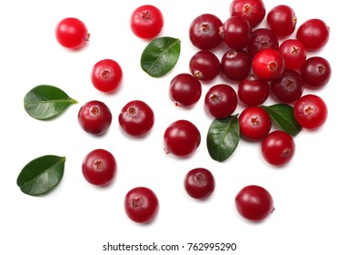 Cranberry with leaves isolated on white. With clipping path. Full depth of field.
