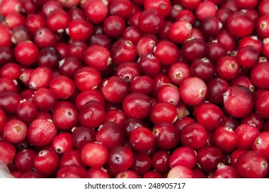 cranberry red solid background.