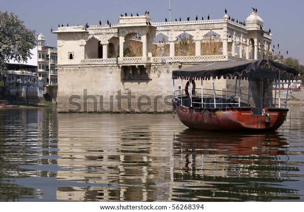 Crane colony on old buildings in Lake Pichola