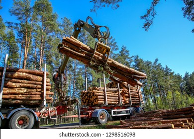 Crane in forest loading logs in the truck. Timber harvesting and transportation in forest. Transport of forest logging industry and forestry industry.