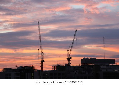crane in the morning sunrise time look like silhouette capture