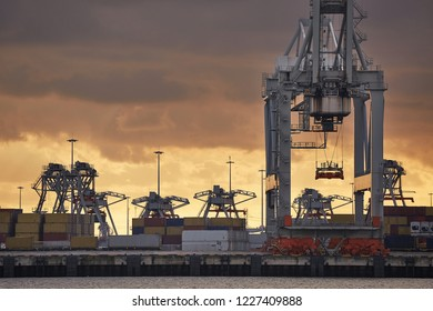 Cranes of a container shipping terminal