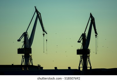 Cranes in Harbor at Twilight
