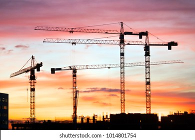 cranes on a construction site at sunset