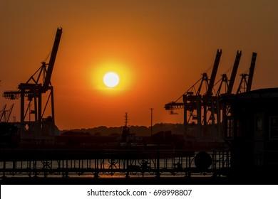Cranes in the sundown