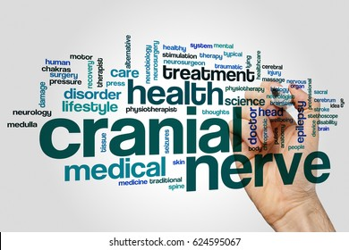 Cranial nerve word cloud concept on grey background.