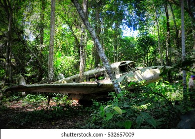 Crashed plane in the jungle