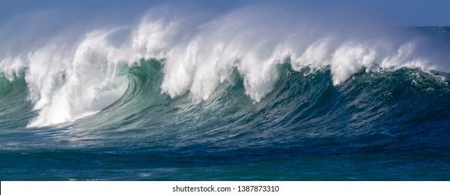 Crashing giant  Ocean Wave panorama