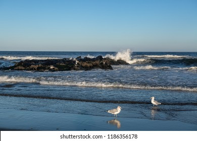 Crashing waves on the jetty with seagulls along the shoreline in Avon by the Sea in New Jersey.