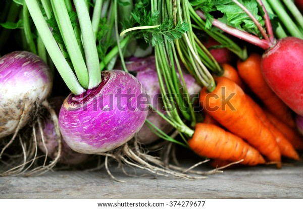 Crate of fresh harvested root vegetables: carrots, turnips and radishes, selective focus