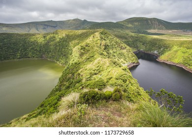 Crater lake with hydrangeas in the foreground, Caldeira Funda. Azores islands, Portugal