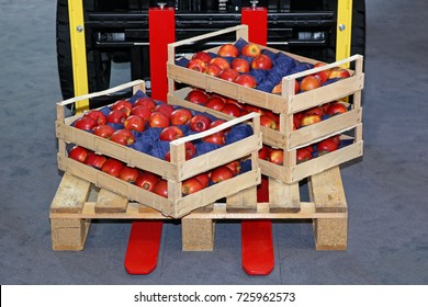 Crates With Apples at Foklift Pallet