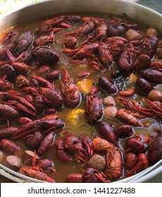 Crawfish boil with corn and potatoes in pot