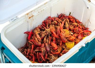 Crawfish Boil, Crawdads, corn and cajun spices