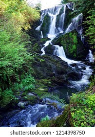 Crawfordsburn Waterfall in Crawfordsburn Country Park, Northern Ireland