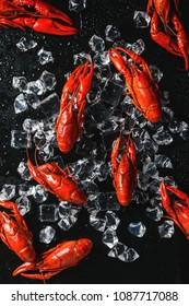 Crayfish closeup image