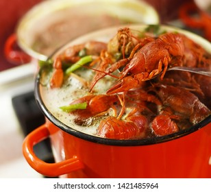 Crayfish are cooked in a large red saucepan. Cooking crayfish.