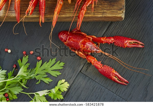 Crayfish with fresh green cilantro. Delicious, boiled, red crawfishes on a dark wooden table, close-up.