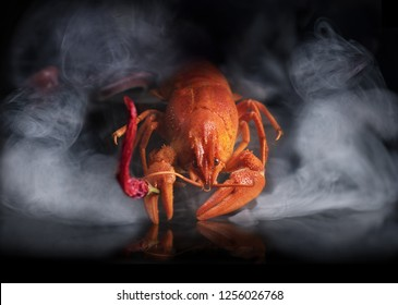Crayfish or lobster coming out of the pot in the smoke with red dry chili pepper in the claw