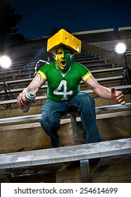 Crazed football fan cheers in bleachers