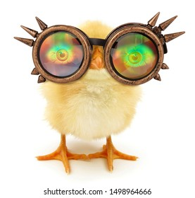 Crazy chick funny with steam punk sunglasses
