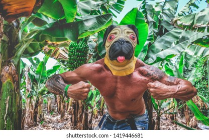 Crazy tattoo man inside bananas plantation - Hipster guy with dog mask making funny position in front of the camera - Absurd and funny trend concept - Focus on face