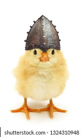 Crazy yellow chick medieval knight with helmet funny baby animal poster