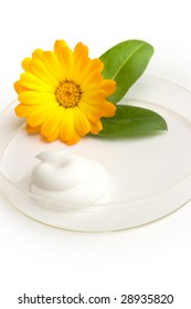 the cream and herb image in a glass saucer