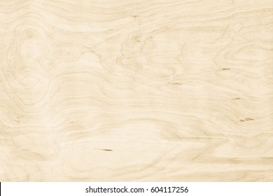 Cream white wood texture wall background. Board wooden plywood pine paint light nature for seamless pattern bright on wallpaper. Surface table beach summer blank for design and decoration.