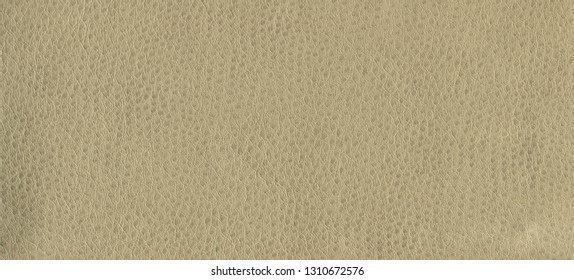 Creamy, light brown, leather background. Vintage fashion background for designers and composing collages. Luxury textured genuine leather of high quality.