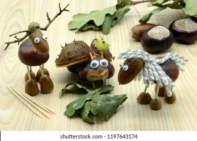 creating acorn chestnut figures bug deer and horse in autumn time. childhood tinker.