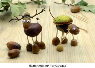 creating deer made of acorn and chestnut figures in autumn time. childhood tinker.
