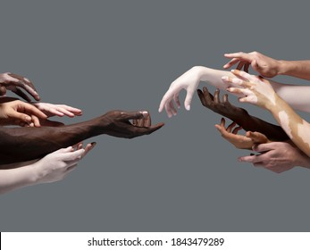 Creation of Adam. Hands of different people in touch isolated on grey studio background. Concept of relation, diversity, inclusion, community, togetherness. Weightless touching, creating one unit.