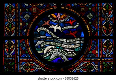 Creation of the creatures of the sea and of the birds on the fifth day, described in Genesis 1:20-23. Stained glass in the Notre Dame church in Dinant, Belgium.