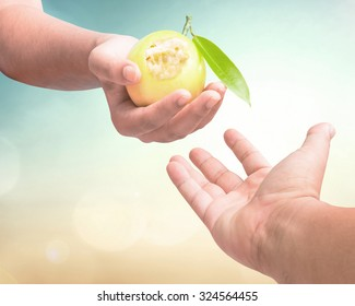 Creation story concept: Eve hand holding ate fruit and reaching out to Adam hand over blurred eden garden background.