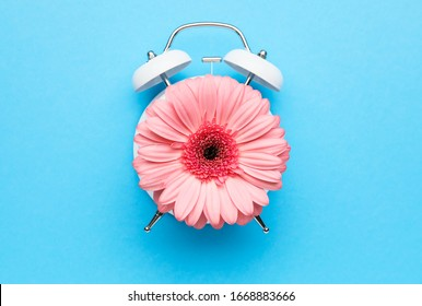 Creative alarm clock made with flower on color background