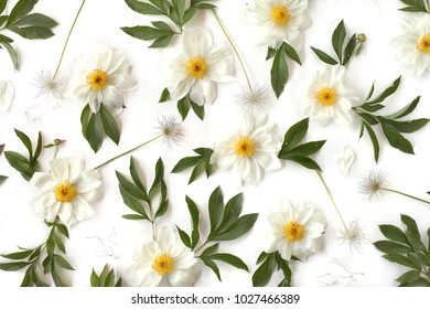 Creative arrangement flat lay floral pattern made of white peony flowers, green leaves and pasque-flower seeds on white background. Top view.