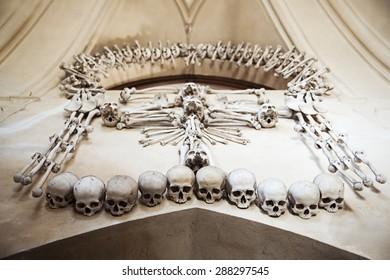 Creative arrangement set for human skeleton bones