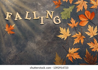 Creative autumn layout, colorful autumn leaves on a dark abstract background and the text of wooden letters-falling. Overhead view,copy space