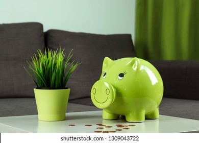 Creative background, green pig money box on gray background. The concept of saving money, savings, pig piggy, family budget, copy space.
