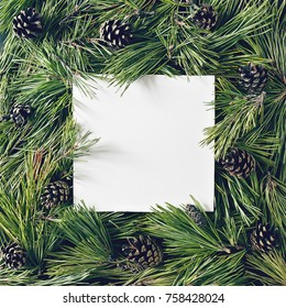 Creative background of pine branch and cones with white paper card. New Year and Merry Christmas Concept. Flat Lay.