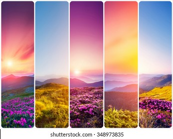 Creative collage of summer landscape with vertical photo. Location Carpathian, Ukraine, Europe. Beauty world. Instagram toning effect.