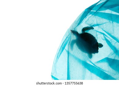 Creative concept advertising for campaign save oceans from plastic pollution by photo of sea turtle model caught struck in blue plastic bag with copy space. Plastic looks clear from studio lighting.