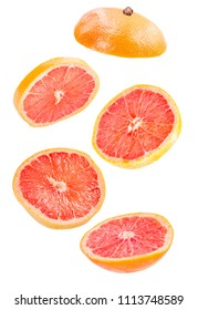 Creative concept with flying grapefruit. five slices of grapefruit isolated floating in the air