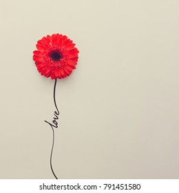 Creative concept made of red daisy flower with word love. Flat lay. Valentines day concept.