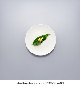 Creative concept photo of pills on leaf laying on plate on grey background.