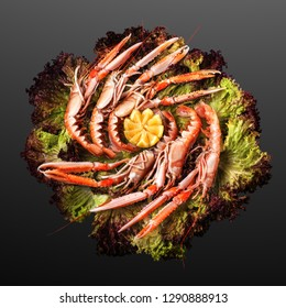 Creative concept photo of  sea food Norway lobster on plate of salad on black background.