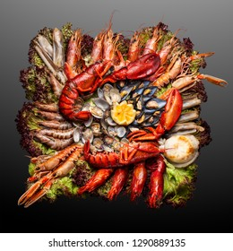 Creative concept photo of  sea food on plate on black background.